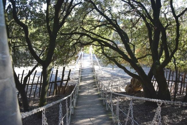 ponte città della domenica