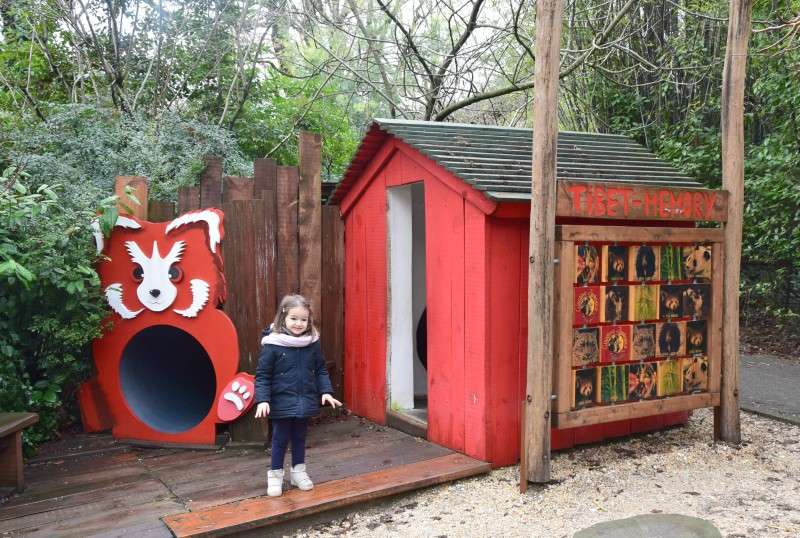zoo pistoia giochi