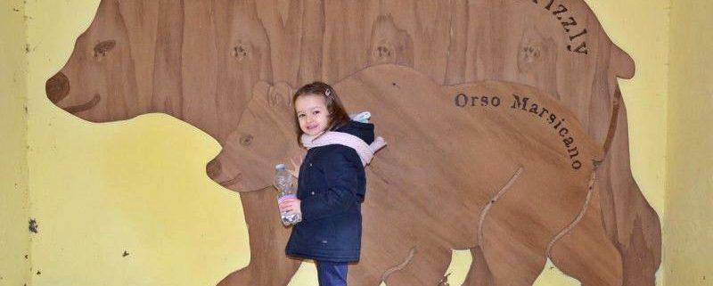 zoo pistoia sagome orsi