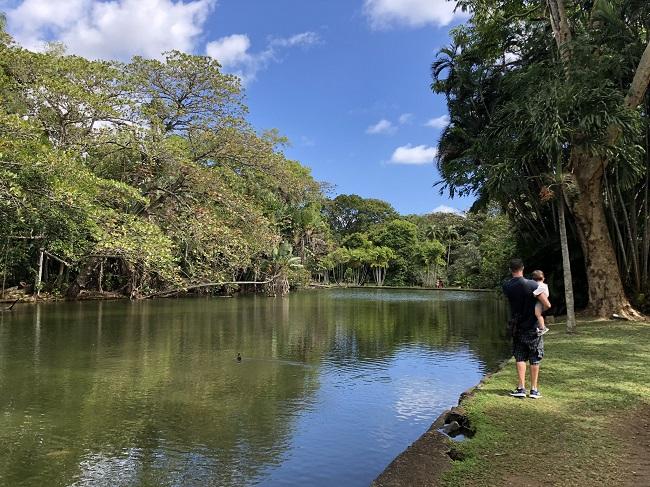 Giardino botanico di Mauritius